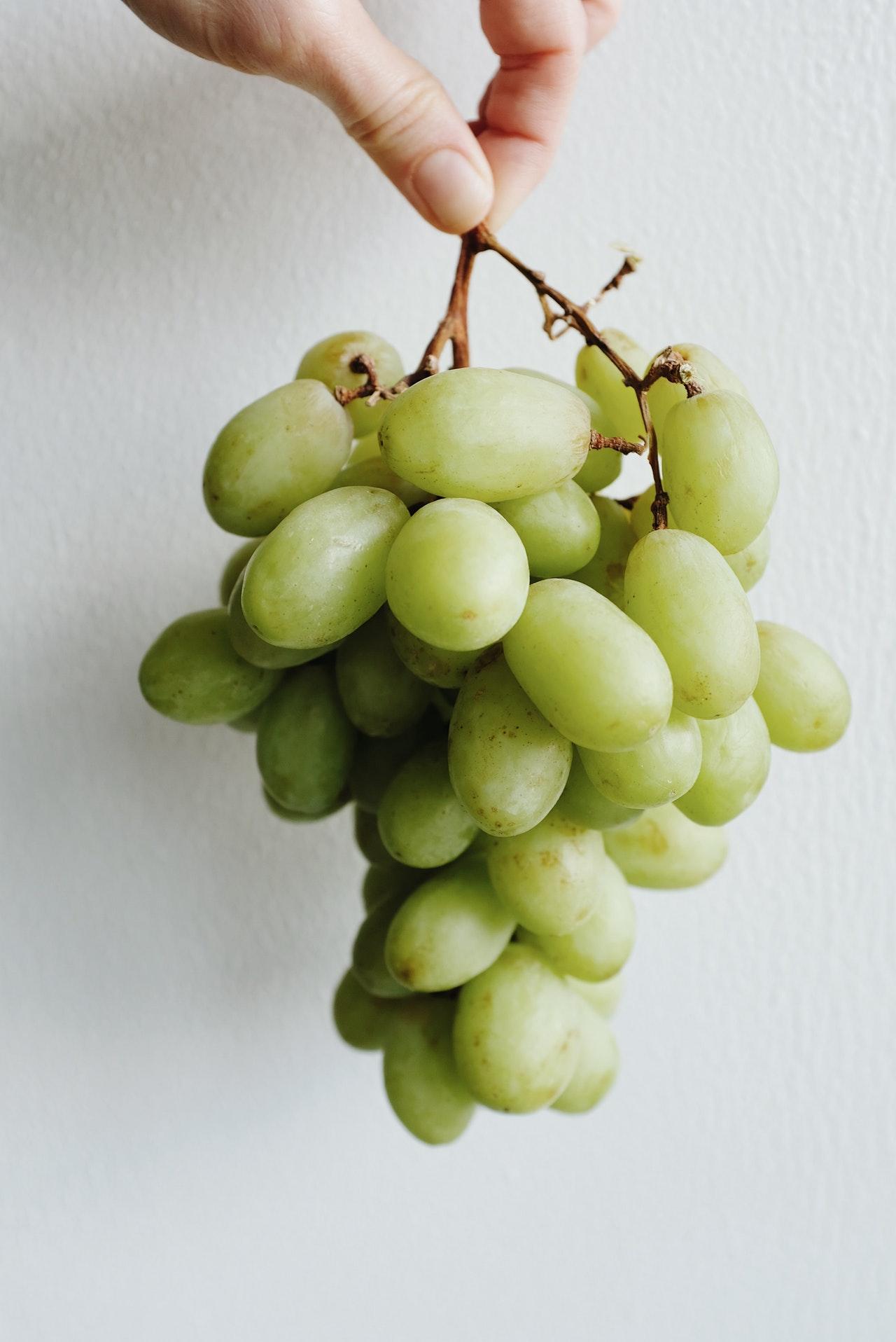 zašto je grožđe dobro za vaše oči